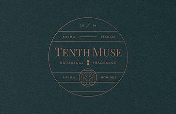 tenthmuse-studiompls-1